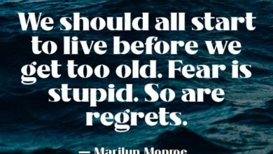 facing fears quotes we should all start to live before we get too old marilyn monroe.jpg